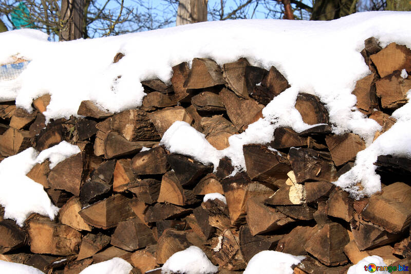 Firewood  winter   snow №499
