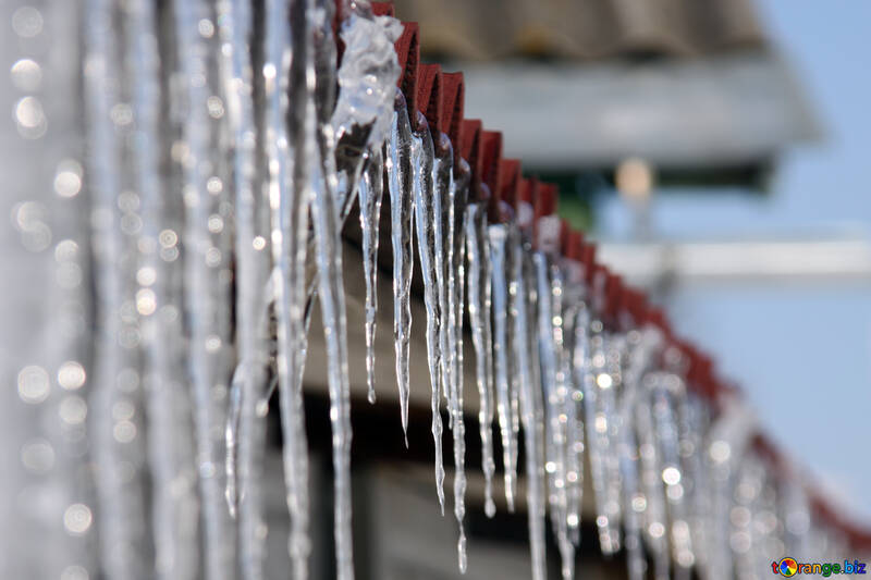 Icicles  №487