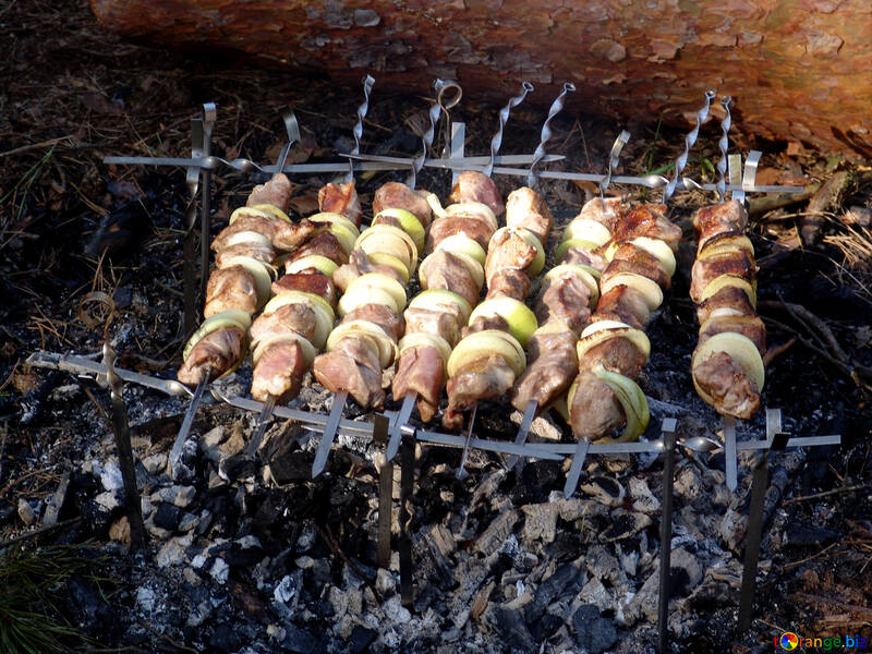 Brochette fried on makeshift barbecue skewers from pine forest №456