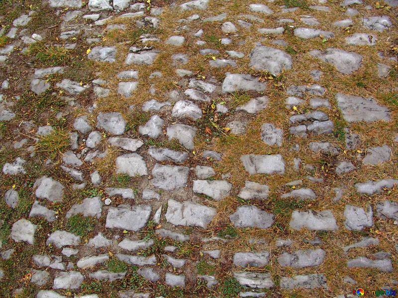 Su strada di pietra ricoperto d`erba №356