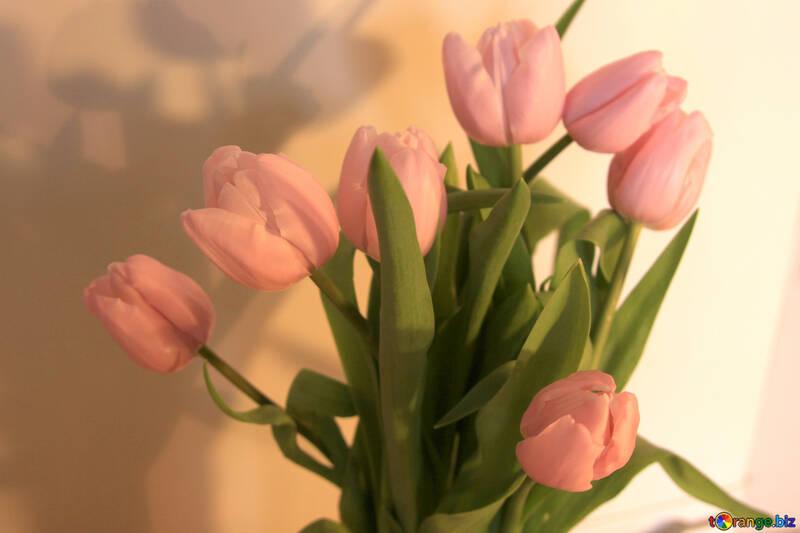 Tulips bouquet №947