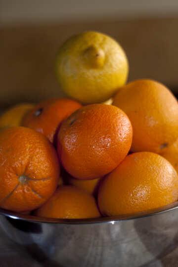 Citrus №1172