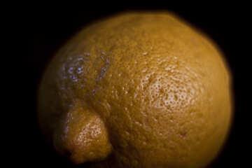 Lemon Skin №1171