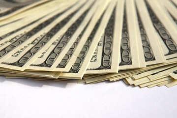 Dollar №1479