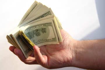 Dollar in Palme №1532