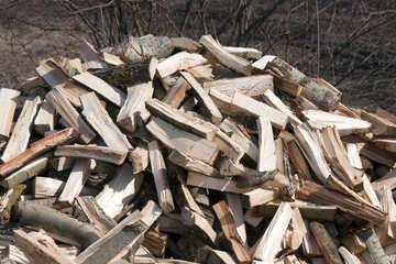 Fire wood №1079