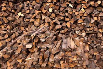 Holz №1704