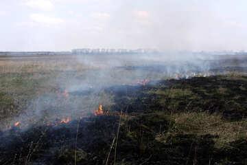 Steppe fire №1724