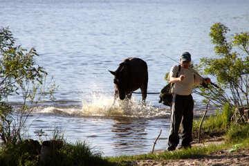 Рыбак и купающийся конь №1929