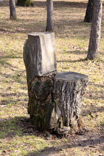Chair sawn wood №1409