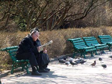 Pensionati su una panchina leggere un giornale №1450