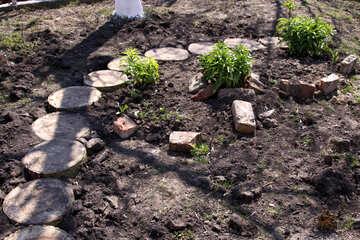 Garden path №1271