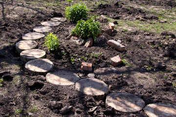 Wooden path in front garden №1269