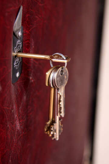 Bunch of keys in door lock №1695