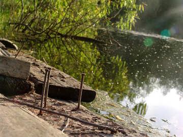Las tablas la orilla del lago №1033