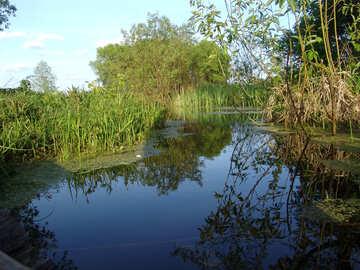 El lago №1026