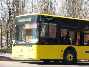 The bus  №1350