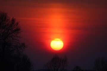 Red Sunset №1330