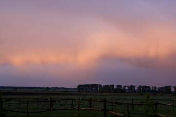 Pink clouds №1875