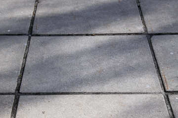The paving slab №1299