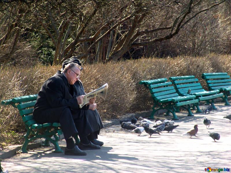 Seniors on bench reading newspaper №1450