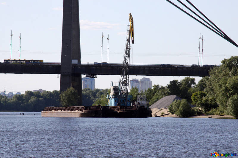 Crane on water №1909