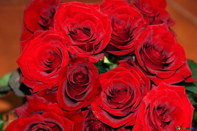 Rot Rosen Blumenstrauß №1423