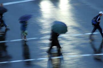 Peatones paraguas №10957
