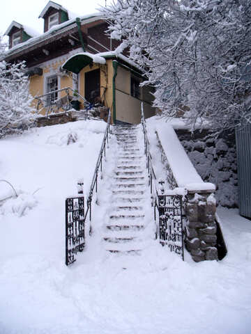 Ice- stair №10566