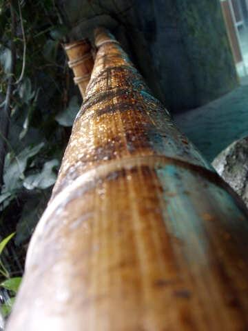 Bamboo railings №10649