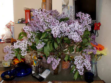 Huge  bouquet  lilac №10585