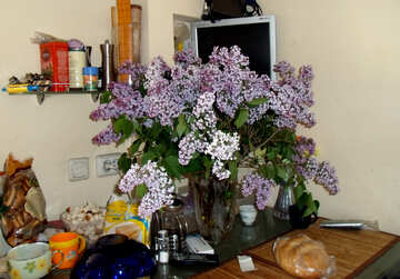Bouquet  Lilac  in the  kitchen  table №10584