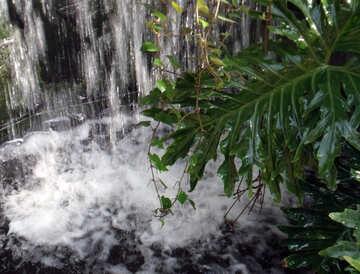 Waterfall №10632