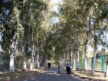 Walk  in  Park №10018