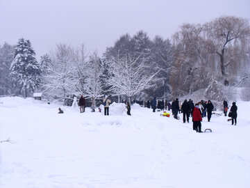 Winter  festivals №10607