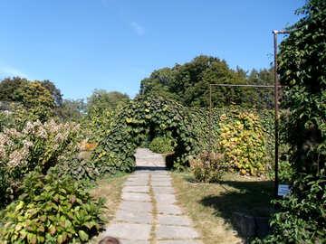 Bogen  in  Garten №10022