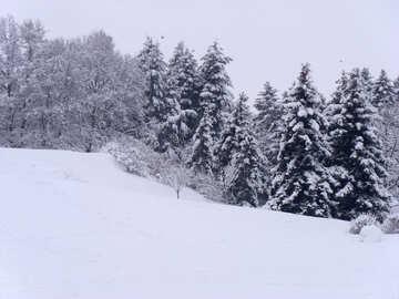 Snow  landscape  №10496