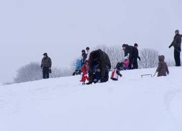 Skifahren  an  Pferdeschlitten №10598