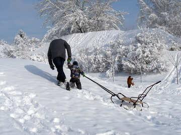 Skiing  at  sleigh №10601