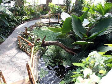 Tropical Garden  №10656