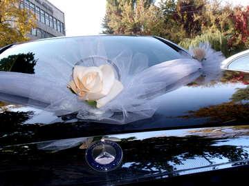 Wedding  limousine №10083