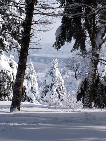 hillsides  Landscape  winter. №10556