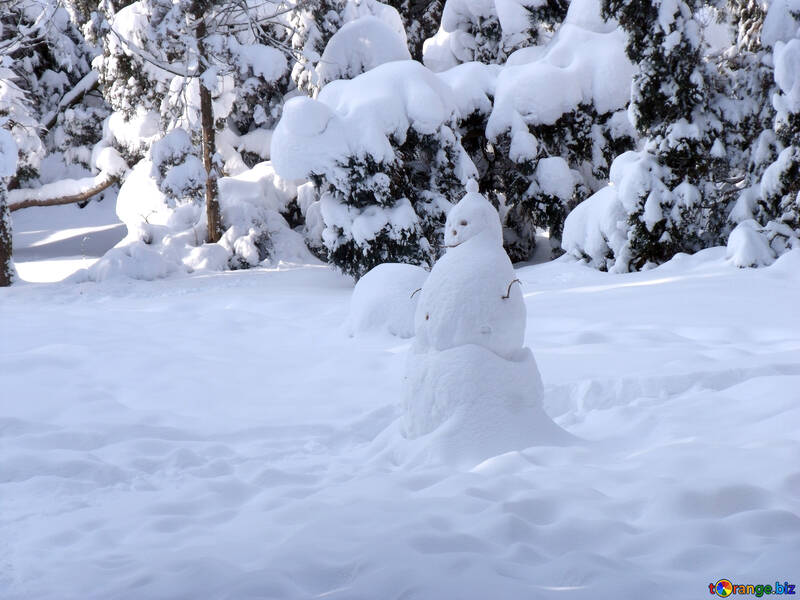 Snowman  in  Forest №10504