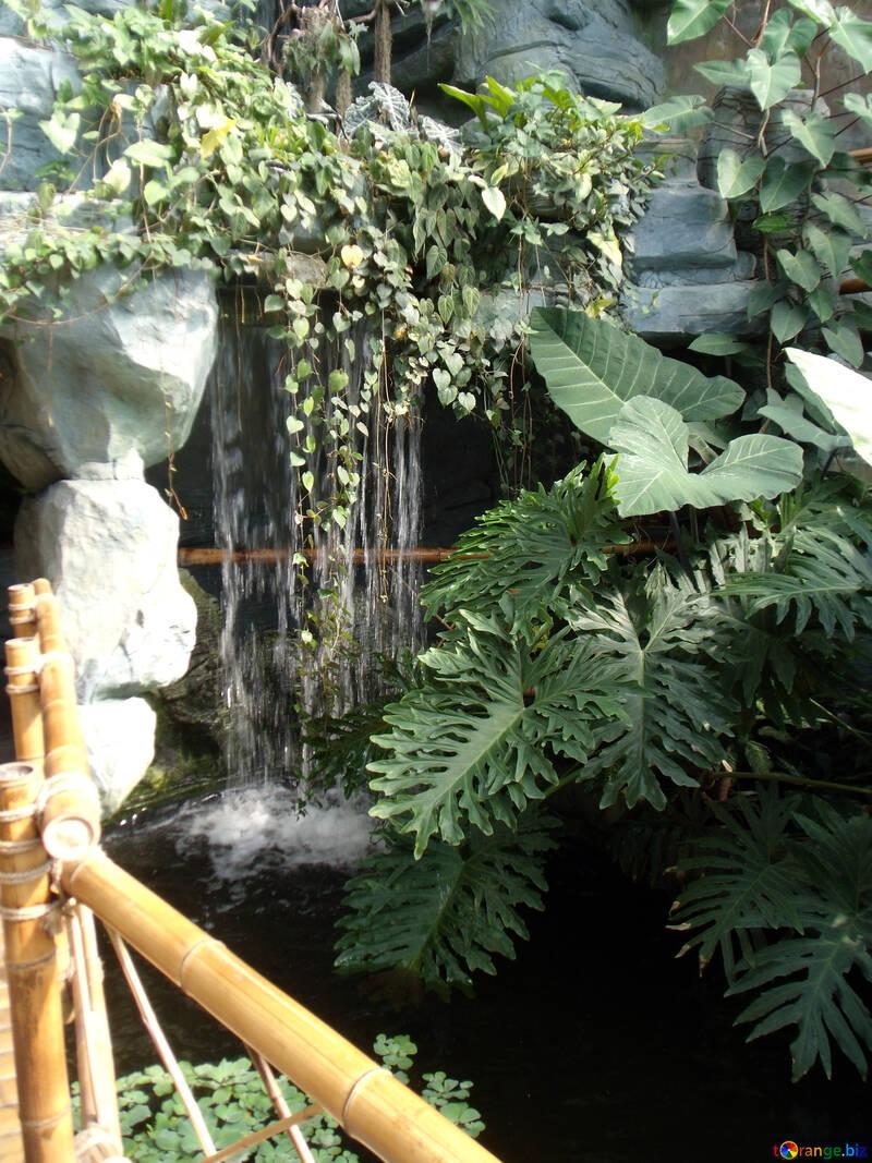 Водопад в саду №10631