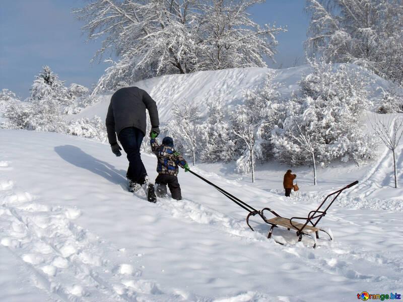 Skifahren  an  Pferdeschlitten №10601