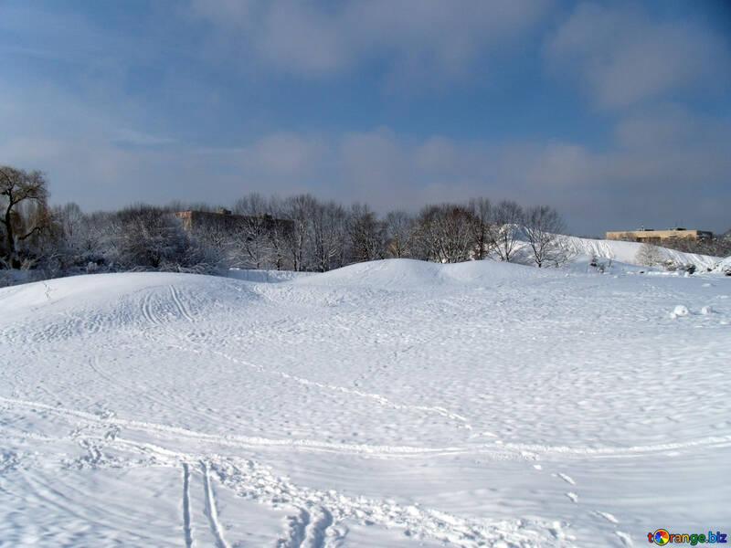 Snow  Plain  №10558