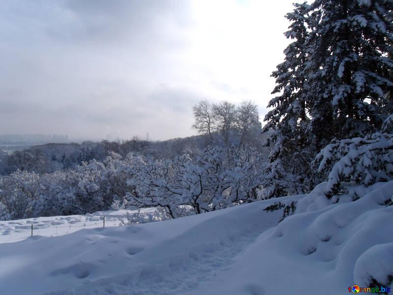 Schnee  Tal  №10525