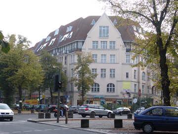 Europäische Kreuzung №11572