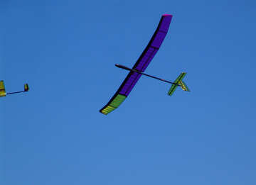 Gliders №11450