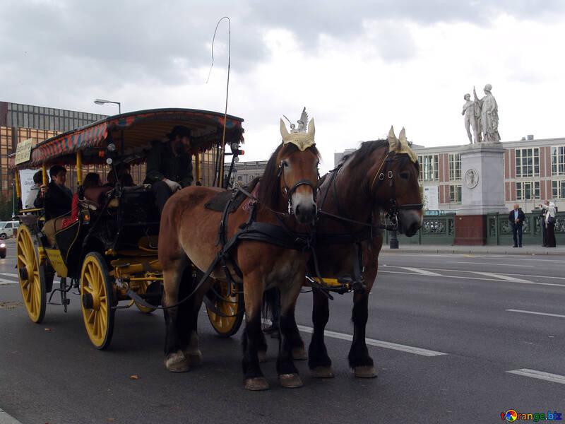 Walking coach №11535